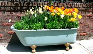 tub_flowers